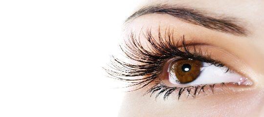 7cc635e089e VTCT Level 3 Award in Eyelash Extensions (500/8810/5) | The Beauty ...